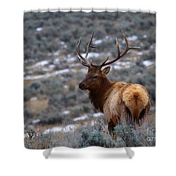 Sage Elk Shower Curtain