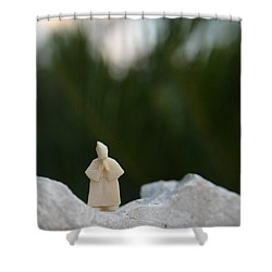 Sage On A Mountain Shower Curtain
