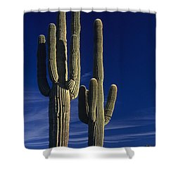 Saguaro Cactus Sunset Arizona State Usa Shower Curtain