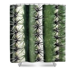 Saguaro Catus Needles Shower Curtain