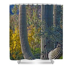 Saguaro Fall Color Shower Curtain