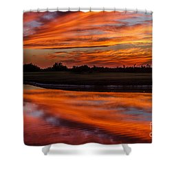 Saguaro Reflection Shower Curtain by Robert Bales