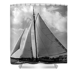 Sail By Shower Curtain