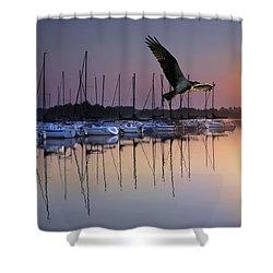 Sailboats Osprey Sunrise Shower Curtain by Randall Branham