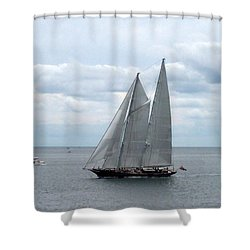 Sailing Day Shower Curtain by Catherine Gagne