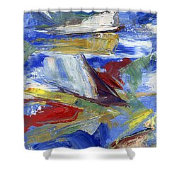 Sailing Shower Curtain by Pamela Parsons