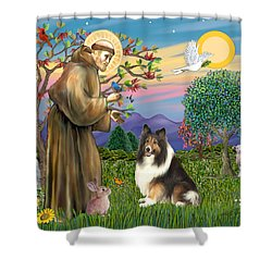 Saint Francis Blesses A Sable And White Collie Shower Curtain by Jean Fitzgerald