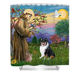 Saint Francis Blesses A Tri Color Collie Shower Curtain by Jean B Fitzgerald
