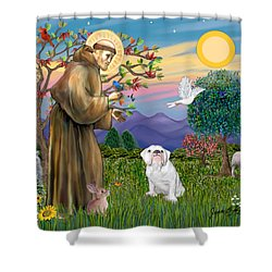 Saint Francis Blesses An English Bulldog Shower Curtain by Jean Fitzgerald