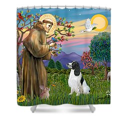 Saint Francis Blesses An English Springer Spaniel Shower Curtain