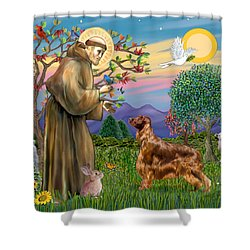 Saint Francis Blesses An Irish Setter Shower Curtain by Jean Fitzgerald