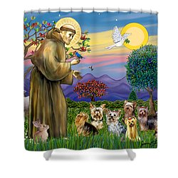 Saint Francis Blesses Seven Yorkies Shower Curtain by Jean Fitzgerald