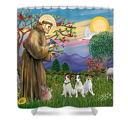 Saint Francis Blesses Three Jack Russell Terriers Shower Curtain by Jean Fitzgerald