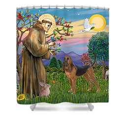 Saint Francis Blessing A Bloodhound Shower Curtain by Jean Fitzgerald