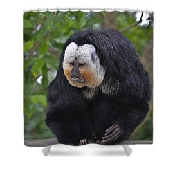 Saki Monkey Shower Curtain
