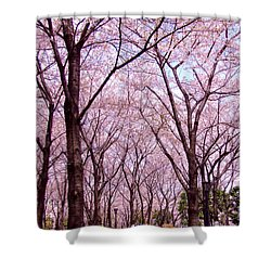 Shower Curtain featuring the photograph Sakura Tree by Andrea Anderegg