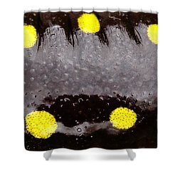 Salamander Skin Shower Curtain