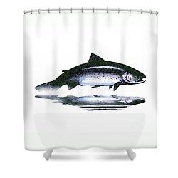 Salar - The Leaper Shower Curtain