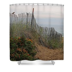 Salisbury Beach Shower Curtain