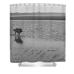 Shower Curtain featuring the photograph Sally V by Cassandra Buckley