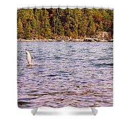Salmon Jumping In The Ocean Shower Curtain by Peggy Collins