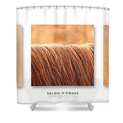 Salon D'equus Light Shower Curtain by Michelle Twohig