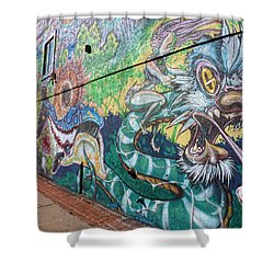 Shower Curtain featuring the photograph Salt Lake City - Mural 2 by Ely Arsha