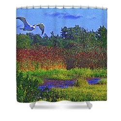 Salt Marsh Gull Shower Curtain