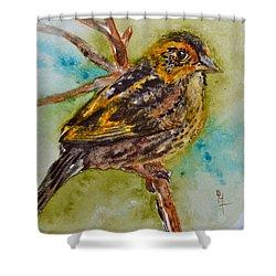 Saltmarsh Sparrow Shower Curtain