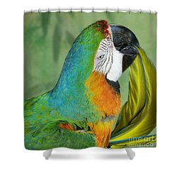 Salute I Am Blowing You A Kiss Shower Curtain