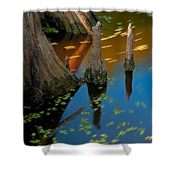 salvinia In motion Shower Curtain