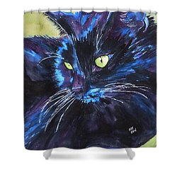 Samba Shower Curtain