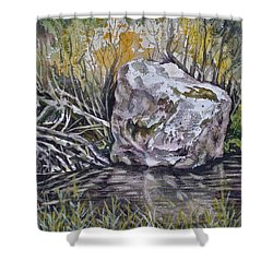 San Poil River Rock Shower Curtain