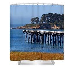 San Simeon Pier By Diana Sainz Shower Curtain by Diana Sainz