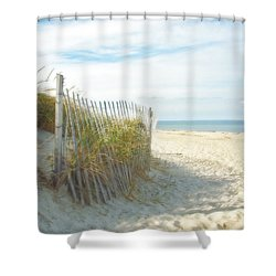 Shower Curtain featuring the photograph Sand Beach Ocean And Dunes by Brooke T Ryan