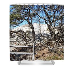 Sand Dune With Trees Shower Curtain by Catherine Gagne