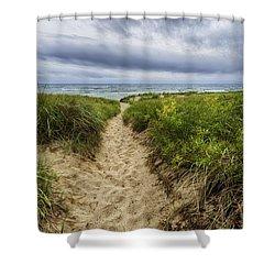 Sand Dunes Beach Path Shower Curtain by Sebastian Musial