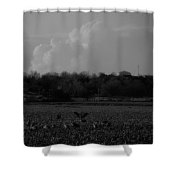 Sand Hill Cranes With Nebraska Thunderstorm Shower Curtain