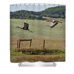 Sand Hill Lift Off Shower Curtain by Daniel Hebard