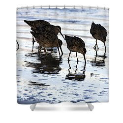 Sand Pipers Reflected Shower Curtain