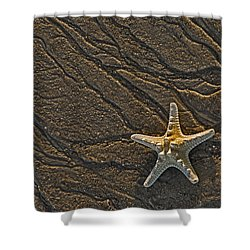 Sand Prints And Starfish  Shower Curtain by Susan Candelario