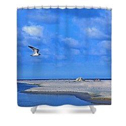 Sandbar Bliss Shower Curtain by Marie Hicks