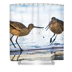 Sanderlings Playing At The Beach Shower Curtain by John Wadleigh