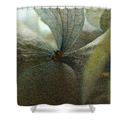 Shower Curtain featuring the photograph Sandflower by WB Johnston