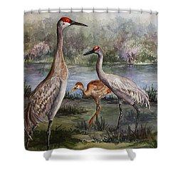 Sandhill Cranes On Alert Shower Curtain