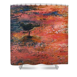 Sandpiper Cape May Shower Curtain by Eric  Schiabor