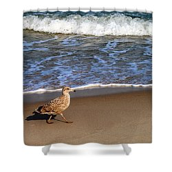 Sandpiper At Ortley Beach, Nj Shower Curtain