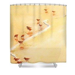 Sandpiper Promenade Shower Curtain