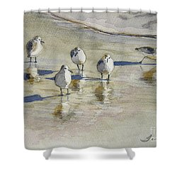 Sandpipers 2 Watercolor 5-13-12 Julianne Felton Shower Curtain