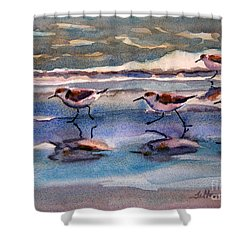 Sandpipers Running In Beach Shade 3-10-15 Shower Curtain